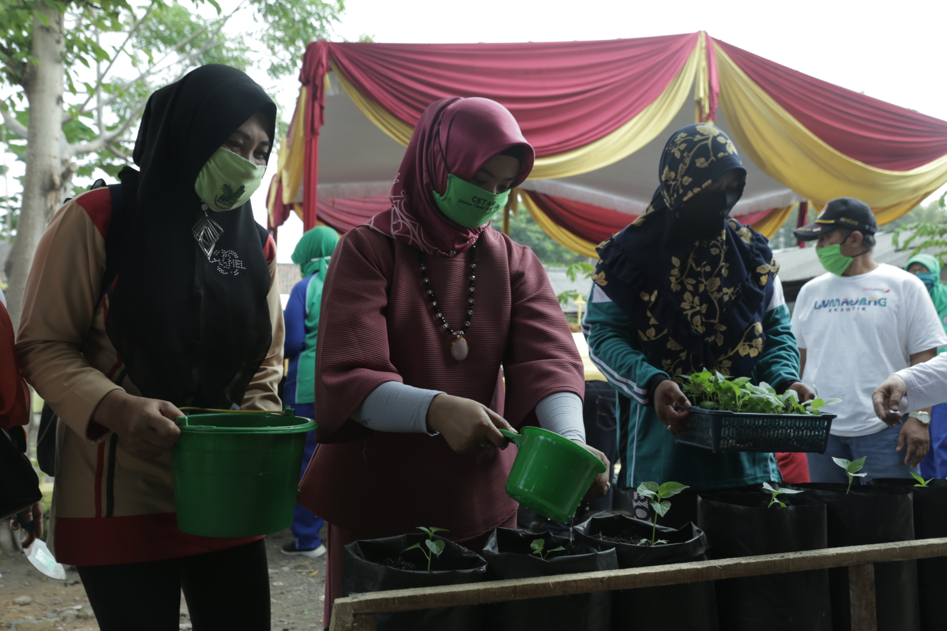 Kujungan dan Peninjauan Ketua TP. PKK Kabupaten Lumajang ke Kampung Anggur